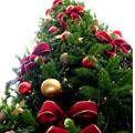 """Arezzo 18 dicembre 2010 – Concerto di Natale. Iniziativa benefica della loggia """"Italia Libera""""."""