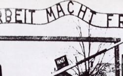 Gran Maestro Raffi: al fianco della Comunità Ebraica romana ricordiamo la tragedia della deportazione nazista. Testimonianza e impegno contro l'inferno della ragione