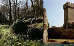 Tornata rituale al Bosco di Isabella di Radicofani