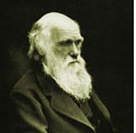 Napoli 13 marzo 2009 – Darwin Day 2009 – Scienza e Umanità – Riflessioni in tema di etica della scienza.