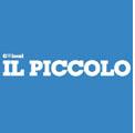 Roma 14 novembre 2010 – (Il Piccolo) L'auto-coccodrillo di Cecovini.
