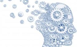 Massoneria marchigiana finanzia ricerca contro l'Alzheimer
