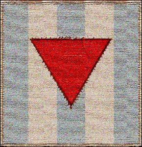 Il simbolo che distingueva i massoni nei campi di concentramento insieme ai detenuti politici