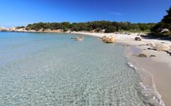 Sardegna. Nuova iniziativa di solidarietà della loggia Agugliastra