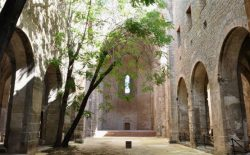 Massoneria, arte e architettura: storie e simboli degli iniziati siciliani. Incontro a Palermo il 23 giugno per Bias 2018