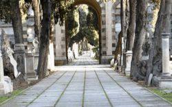 Percorsi storici della Massoneria sarda