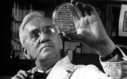 Massoni da Nobel. Alexander Fleming, il padre della penicillina, era un libero muratore. La sua scoperta  ha contribuito a salvare milioni di vite