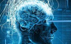 Pensiero magico e pensiero logico. Un libro svela i segreti del cervello e della creatività