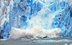 Addio ai ghiacci. Rapporto sull'Artico