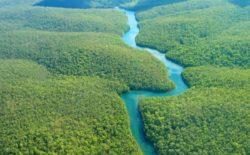 La caduta del cielo. Il racconto di uno sciamano, portavoce dell'Amazzonia brasiliana